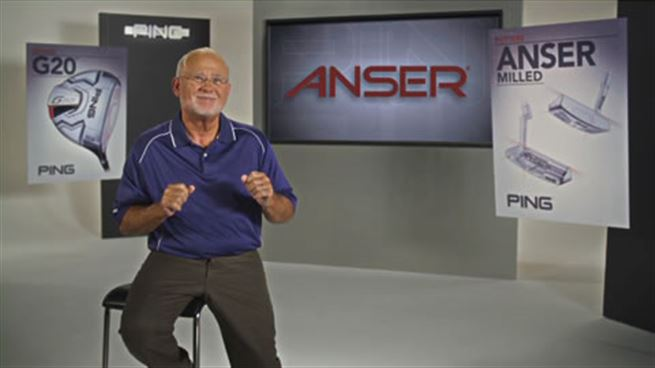 Click to view The Anser Story video